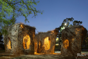Texas Outdoor Lighting added lighting to feature Yippee Ki Yay at the Pease Park Conservancy