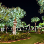 Landscape Lighting adding uplights in palm trees in Horseshoe Bay Texas